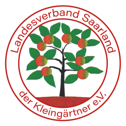 Neues Logo transparent
